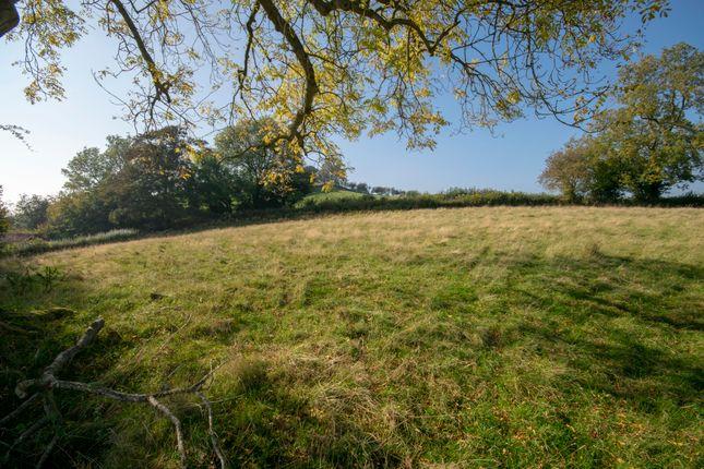 Llanfechain, Powys SY22