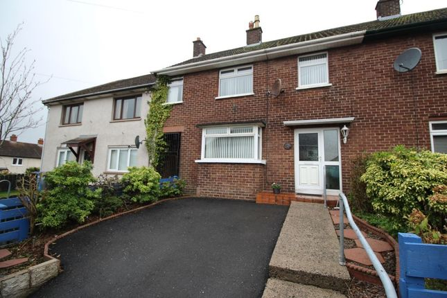Thumbnail Terraced house for sale in Hill Crest, Bangor