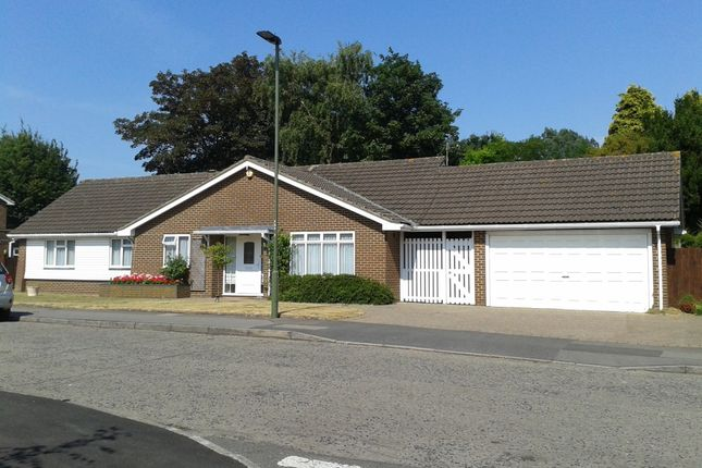 Thumbnail Detached bungalow for sale in Edgeborough Way, Bromley, Kent