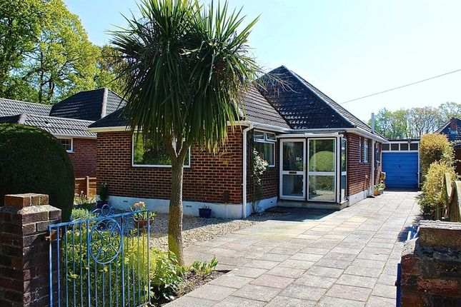 Thumbnail Detached bungalow for sale in Deneve Avenue, Poole