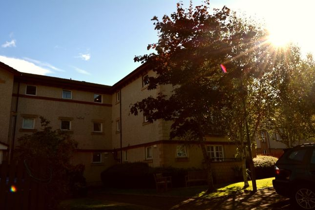 Thumbnail Flat to rent in Fortuna Court, Falkirk
