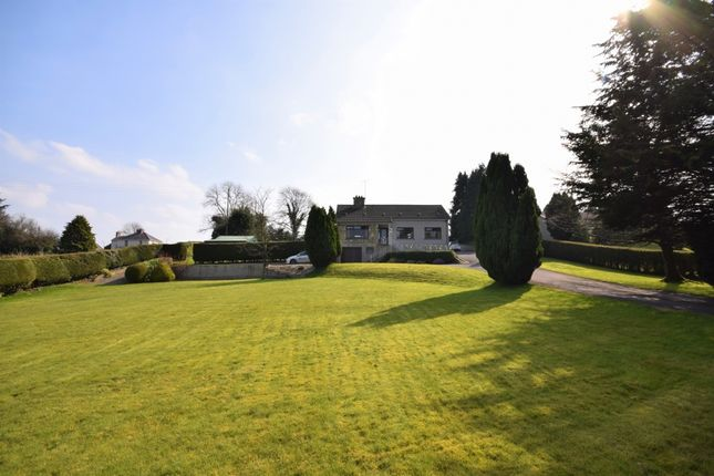 Thumbnail Bungalow for sale in Station Road, Clogher
