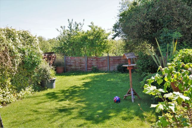 Thumbnail Semi-detached house for sale in Beech Avenue, York