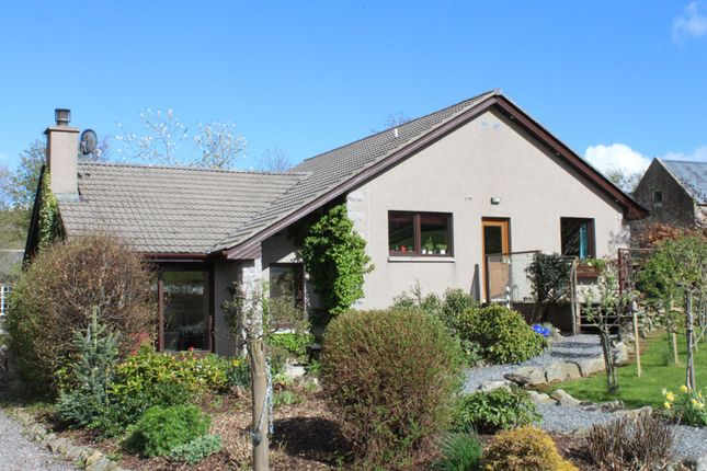 Thumbnail Detached bungalow for sale in Cushnie, Alford