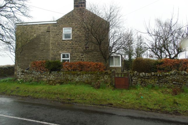 Thumbnail Detached house to rent in Rowfoot, Haltwhistle