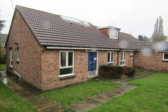 Thumbnail Detached bungalow for sale in Barnoldby Road, Waltham, Grimsby