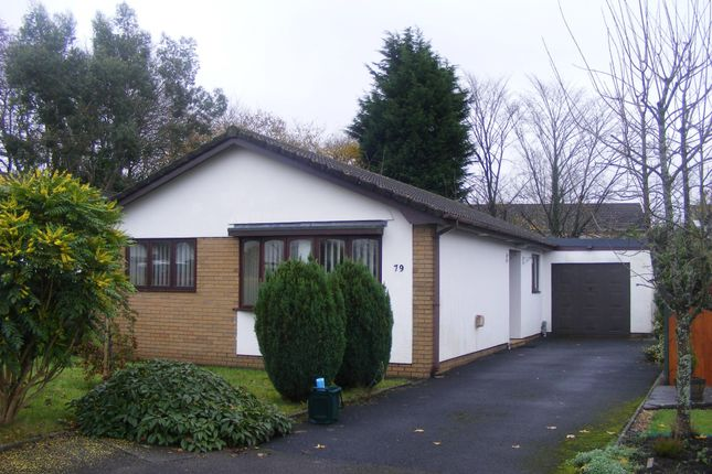Thumbnail Detached bungalow to rent in Llwyn Y Bryn, Ammanford