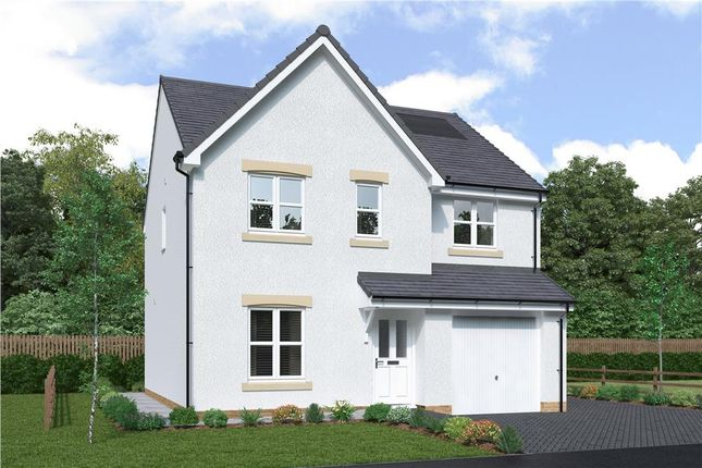 """Thumbnail Detached house for sale in """"Hunter"""" at Red Deer Road, Cambuslang, Glasgow"""
