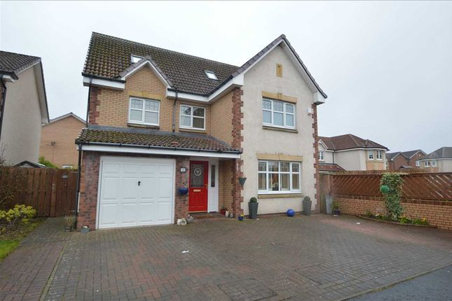 Thumbnail Detached house for sale in Toftcombs Crescent, Stonehouse, Larkhall