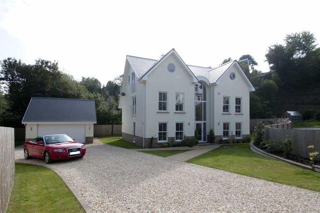 Thumbnail Detached house for sale in Newton Villas, Mumbles, Swansea