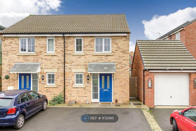 Thumbnail Semi-detached house to rent in Damselfly Road, Northampton