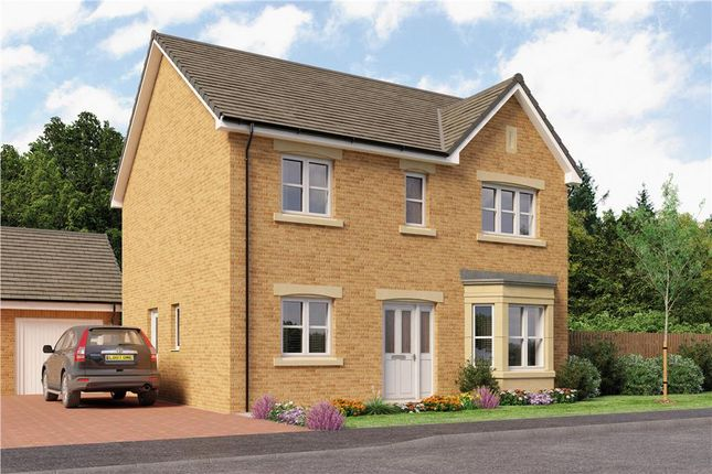 """Thumbnail Mews house for sale in """"Douglas Mid Terr"""" at Bo'ness"""