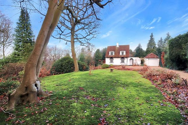 Thumbnail Detached bungalow for sale in Stratton Road, Beaconsfield