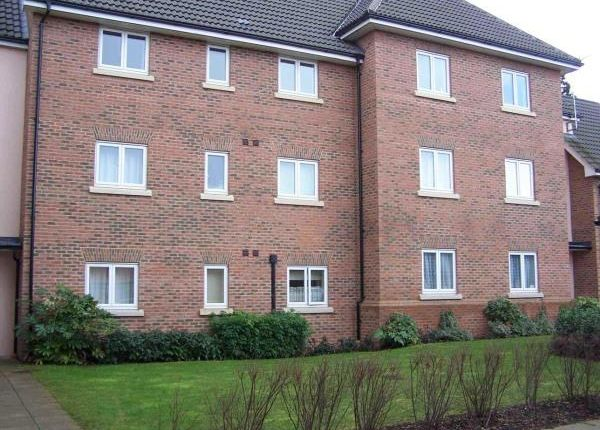 Thumbnail Flat to rent in Goodier Road, Chelmsford