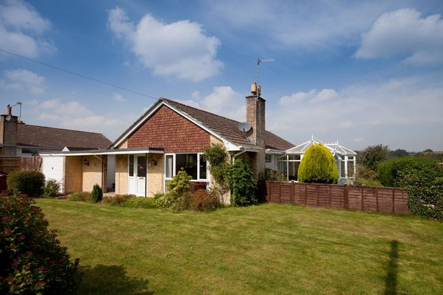 Thumbnail Detached bungalow for sale in St. Johns Close, Donhead St. Mary, Shaftesbury