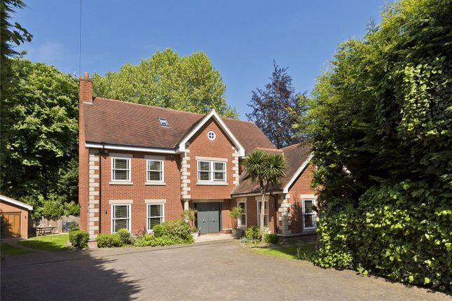Detached house to rent in Portsmouth Road, Esher, Surrey
