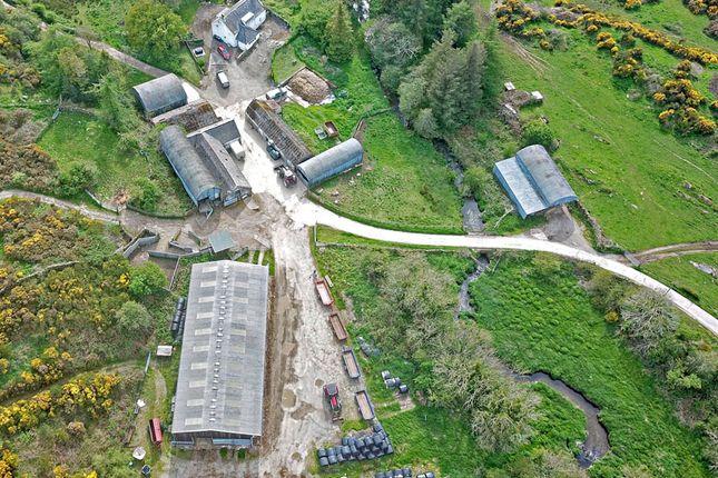 Thumbnail Farm for sale in Borgue, Kirkcudbright