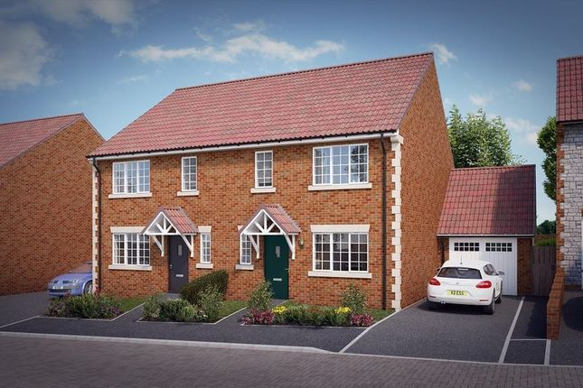 """Thumbnail Property for sale in """"The Elsenham"""" at Knight Road, Wells"""