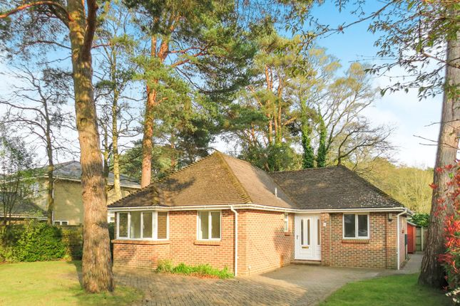 Thumbnail Detached bungalow for sale in Merriefield Avenue, Broadstone