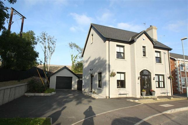 Thumbnail Detached house for sale in Magheraknock Park, Ballynahinch, Down