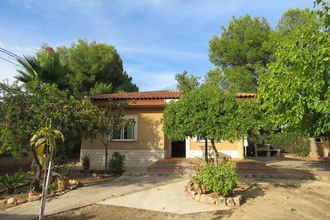 Property For Sale In Olocau Valencia