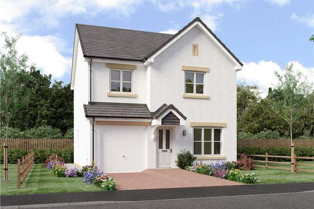 "Thumbnail Detached house for sale in ""Scott"" at Ravenscroft Street, Edinburgh"