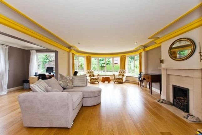 Thumbnail Maisonette to rent in View Road, Highgate N6,