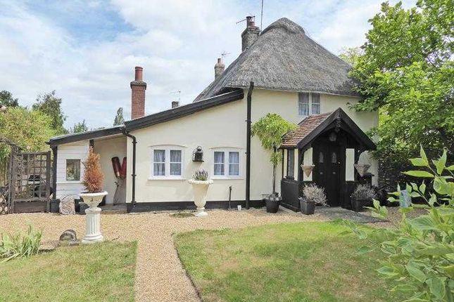 Thumbnail Cottage for sale in Micawber Cottage, Birds Green, Rattlesden, Bury St. Edmunds