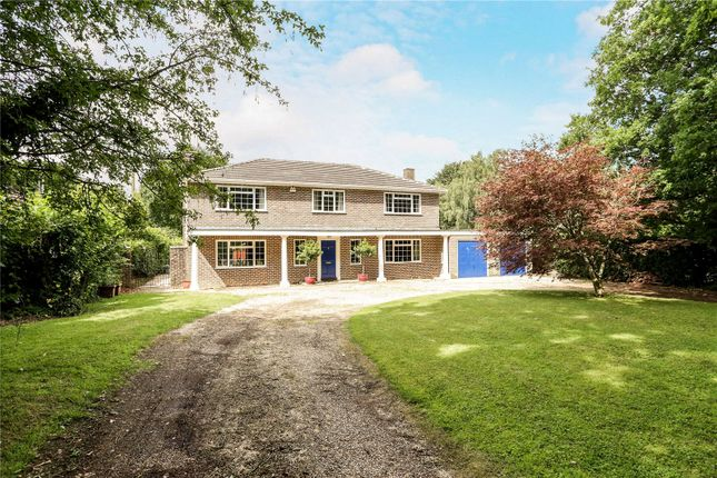 Thumbnail Detached house for sale in Redwood Lane, Medstead, Alton, Hampshire