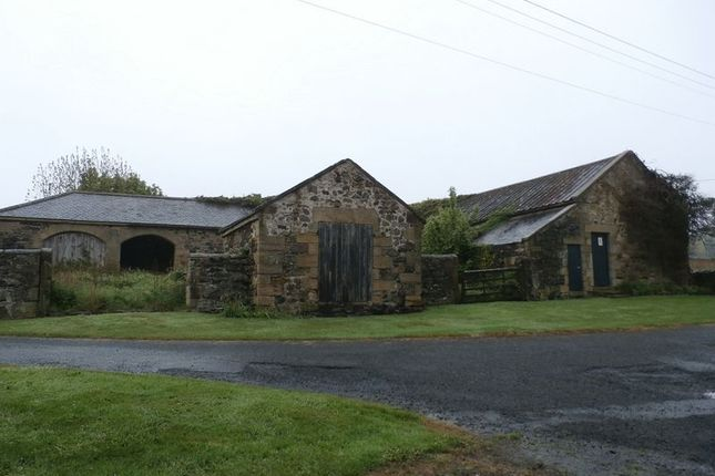 Thumbnail Barn conversion for sale in Alnwick