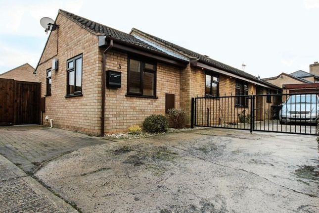 Thumbnail Bungalow to rent in Snowberry Way, Soham, Ely