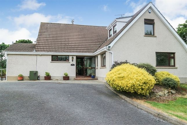 Thumbnail Detached house for sale in Ballymullan Road, Lisburn, County Antrim