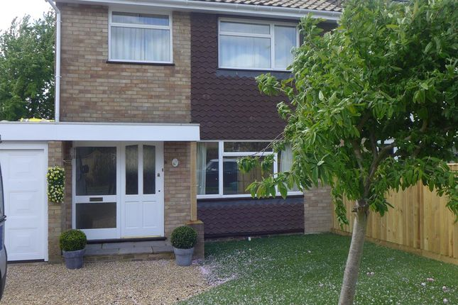 Thumbnail Semi-detached house to rent in Stratton Road, Princes Risborough