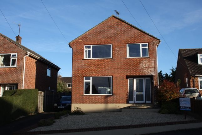 Thumbnail Detached house for sale in Ashley Road, Marnhull, Sturminster Newton
