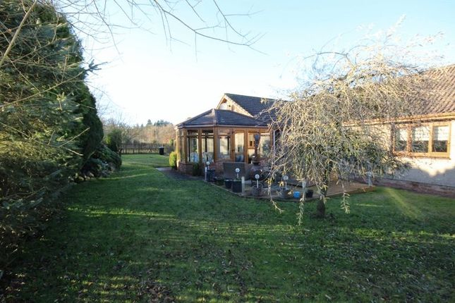 Thumbnail Bungalow for sale in Bickerton Crofts, Hens Nest Road, East Whitburn, Bathgate