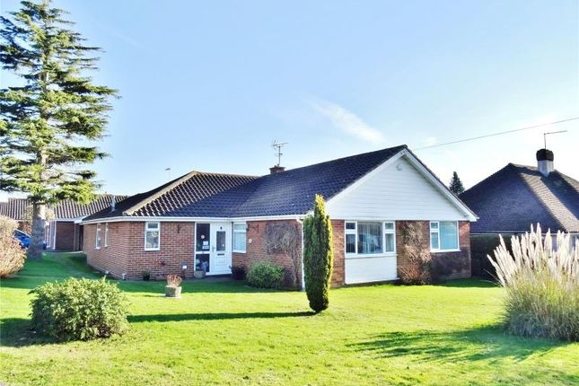 Thumbnail Detached bungalow for sale in Copthorne Hill, Offington, Worthing