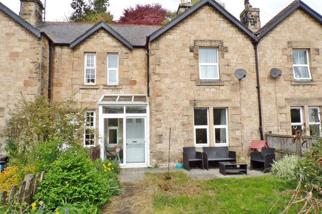 Thumbnail Terraced house for sale in Alexandra Terrace, Haydon Bridge, Hexham