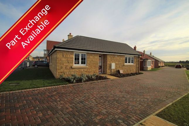 Thumbnail Detached bungalow for sale in The Holland, Mayfield Gardens, Baston, Peterborough
