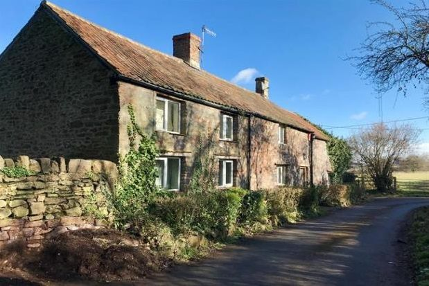 Thumbnail Cottage to rent in Church Road, Portbury, Bristol