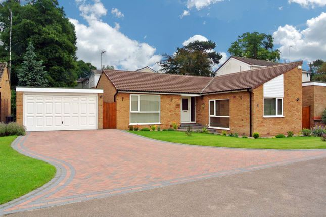 Thumbnail Detached bungalow for sale in Woodbank, Glen Parva, Leicester