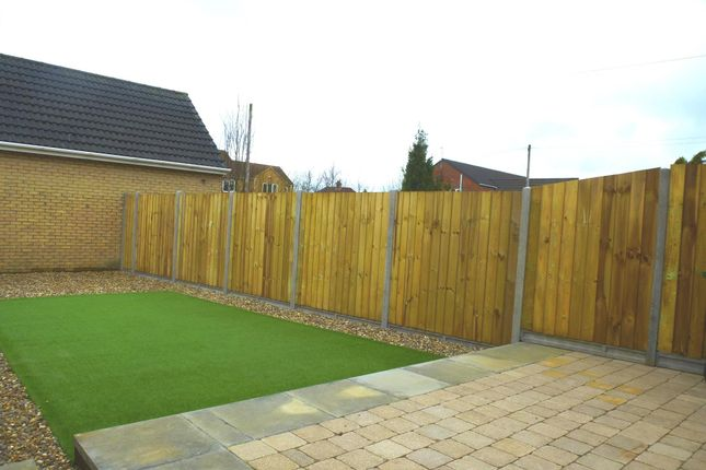 Garden of Upwell Road, March PE15
