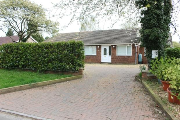 Thumbnail Bungalow to rent in Ickwell Road, Sandy
