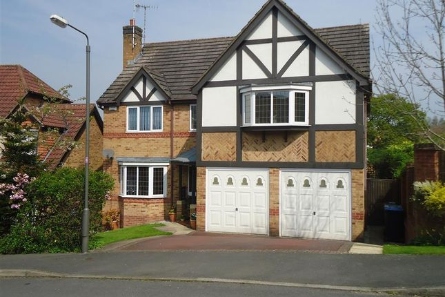 Thumbnail Detached house for sale in Buscott Drive, Ashbourne