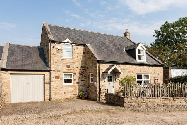 Thumbnail Cottage for sale in Rose Hill Cottage, Hill House Close, Great Whittington, Northumberland