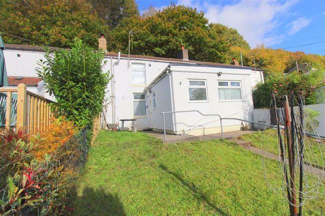 Ivy Terrace, Pontypridd CF37