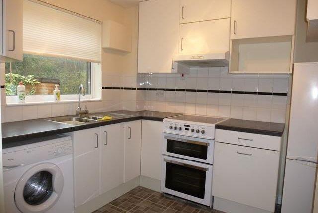 Thumbnail Property to rent in Green Way, Tunbridge Wells
