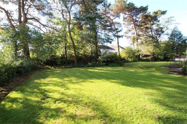 Thumbnail Land for sale in Hollybush Road Building Plot, Cyncoed, Cardiff