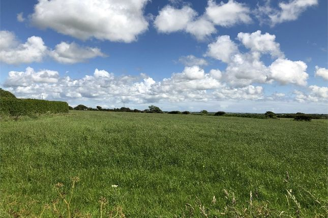4 Acres Or Thereabouts Land, Johnston, Haverfordwest, Pembrokeshire SA62