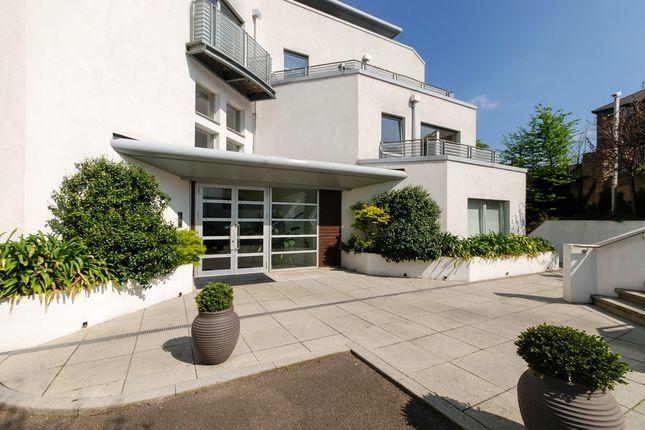 Thumbnail Flat to rent in Lansdowne Lane, Charlton