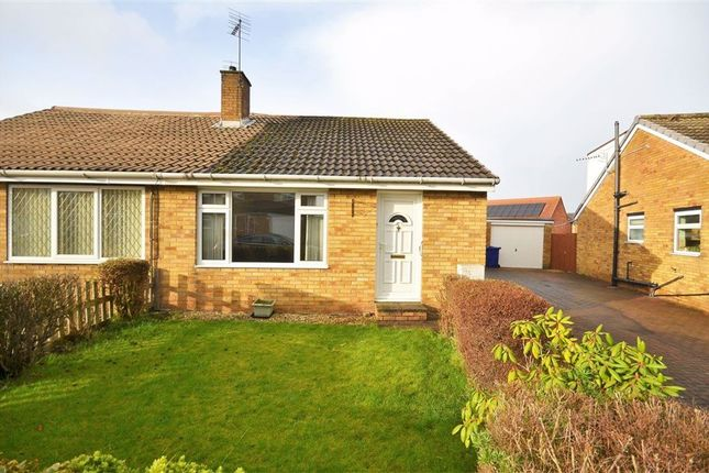 2 bed bungalow to rent in Dane Avenue, Thorpe Willoughby YO8